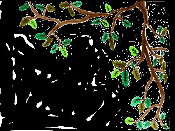 Ast einer Eiche - Aquarell - freigestellt